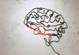 EdTech: EvidenceBmet les sciences cognitives à portée de clic